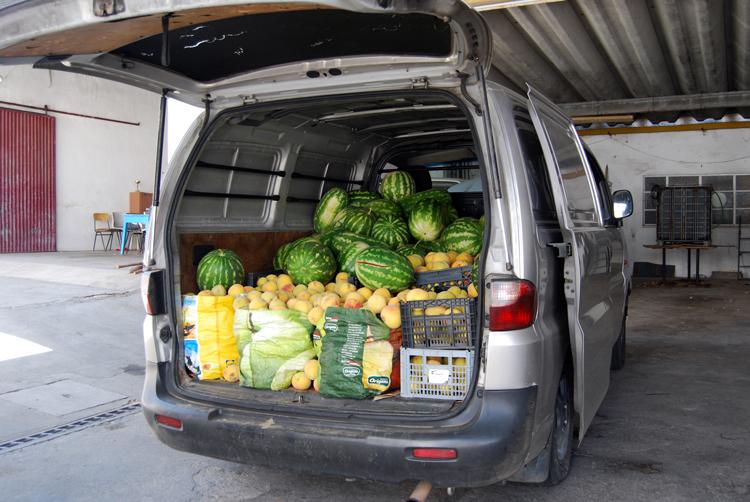 Apanhados a roubar mais de meia tonelada de fruta em Alpiarça
