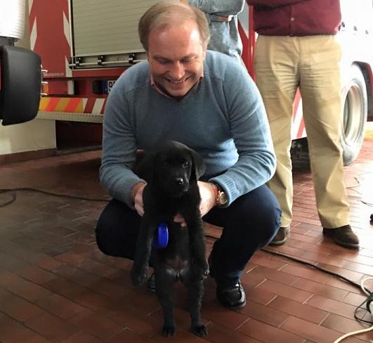 Pedro Ribeiro recebe cadela. Animal já tem nome